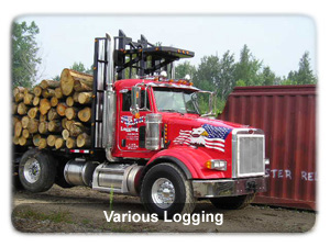 various logging